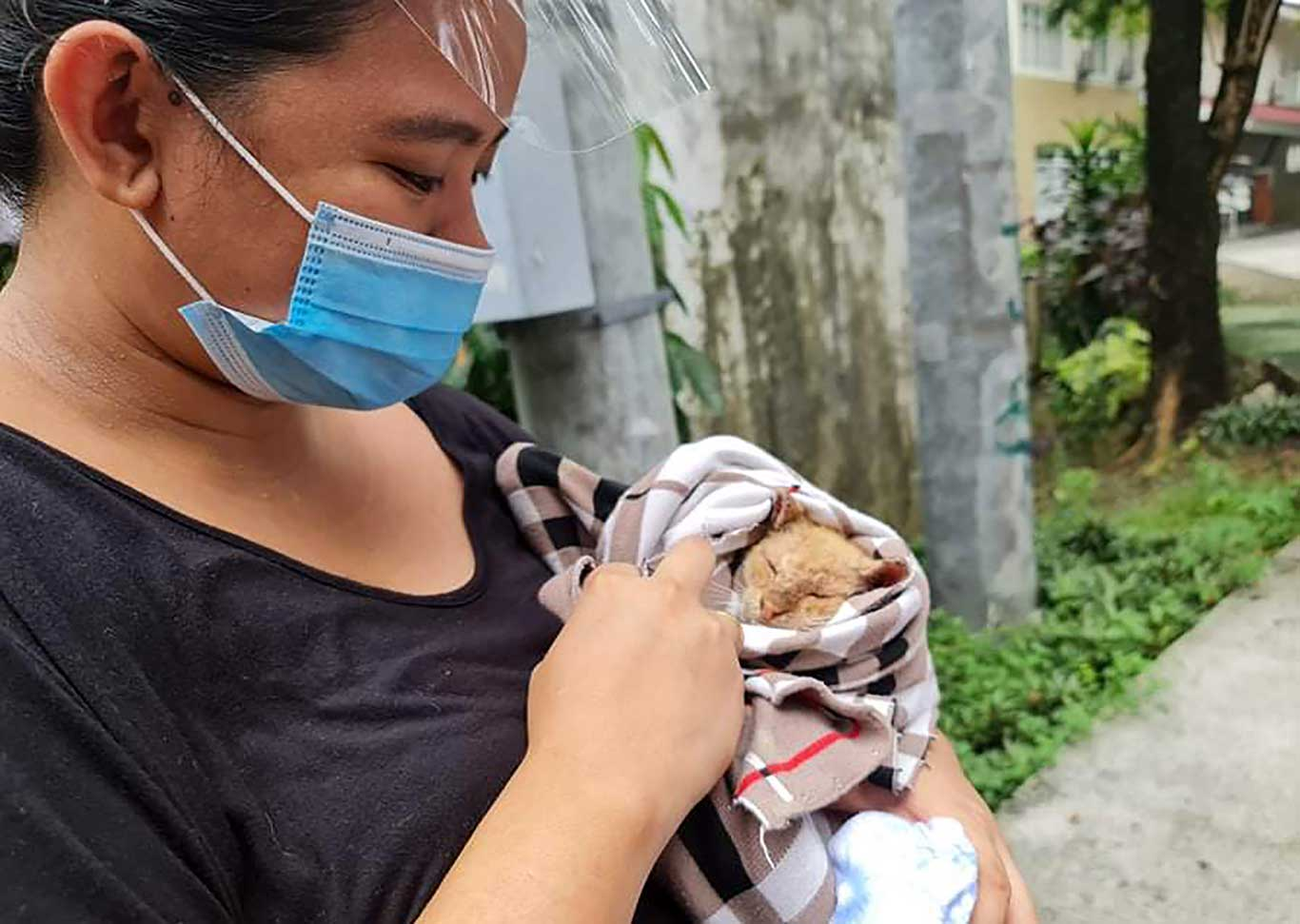 What the pandemic is doing to these animals is SHOCKING: please help! 1