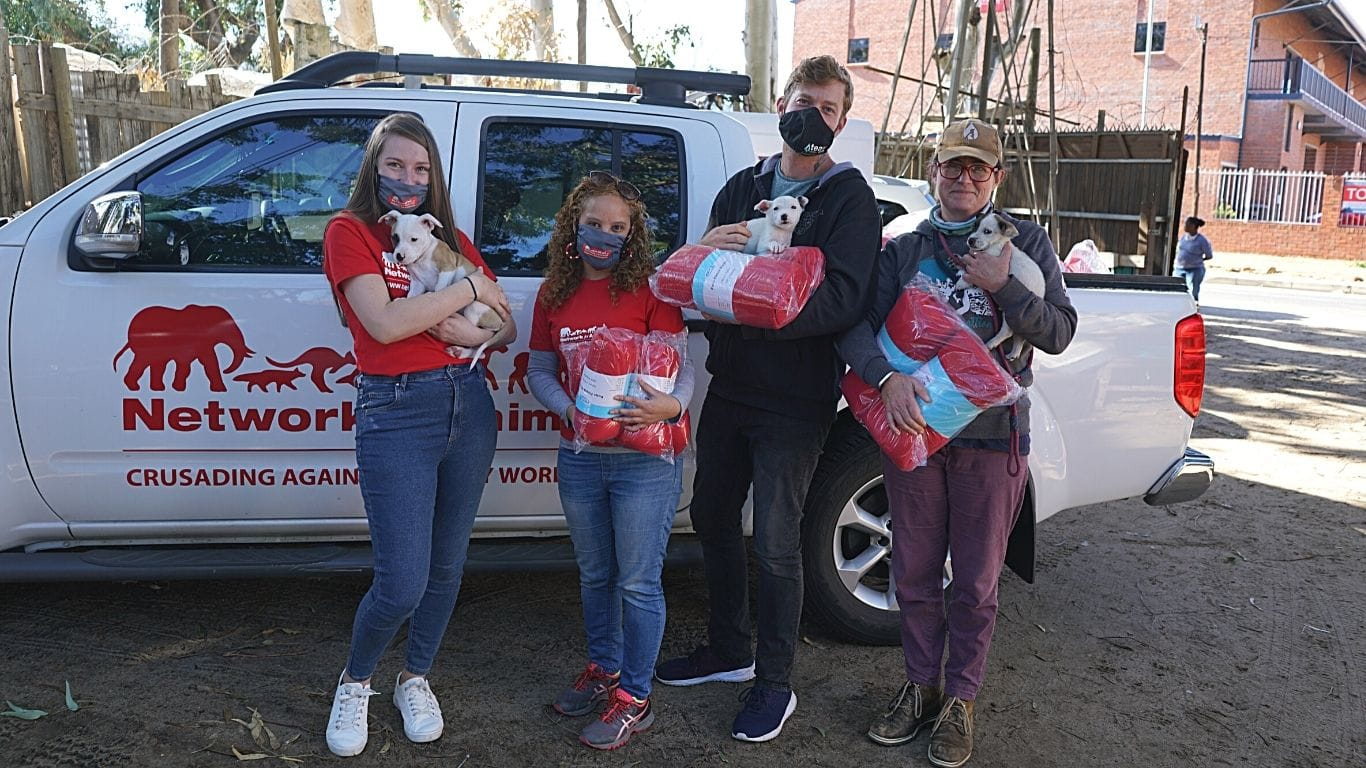 Little Acts Of Kindness: Vulnerable Dogs And Cats From Cape Town's Slums Get 185 Blankets! 1