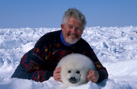 Canada, Stop Hunting Our Seals 3