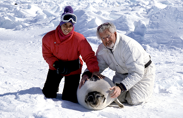 Climate Change is Killing Seals - Canada Doesn't Need To 7