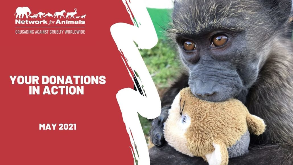 Your donations in ACTION: May 2021