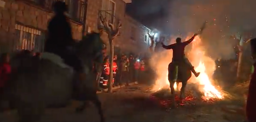 """Horses forcibly """"purified"""" in Spain's bonfires 1"""