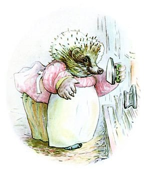 Fun Facts About Hedgehogs 1